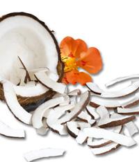 Noix de coco chez Keimling