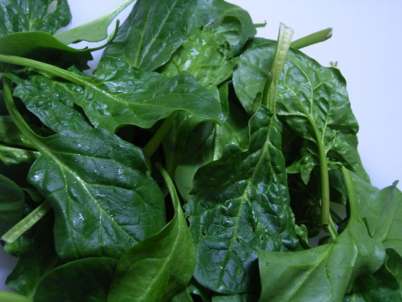 Les épinards, légumes de saison en avril