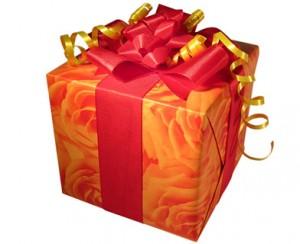 Idées de cadeau de fête des mères pour une maman crudivore !