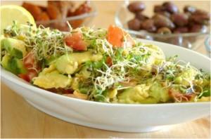 Salade d'avocat et de graines germées