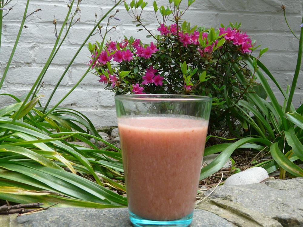 Un smoothie insolite à la rhubarbe et aux framboises
