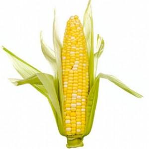 Laissez vous tenter par du maïs cru